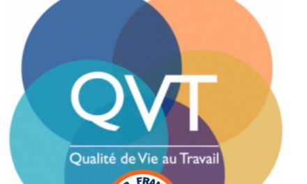 Rapport de la consultation QVT PNC