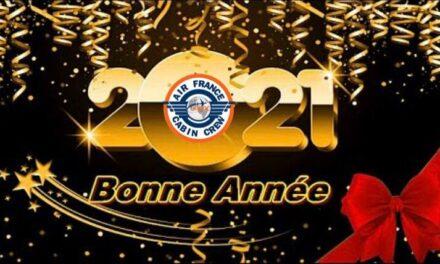 🎉BONNE ANNÉE 2021 !🎊